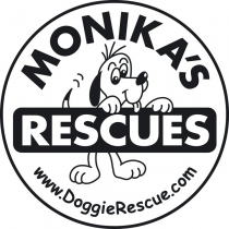 Monika's Doggie Mondays at Lowena's